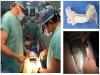 오가메디, 세계적 수준의 정밀수술훈련 새 장을 열다